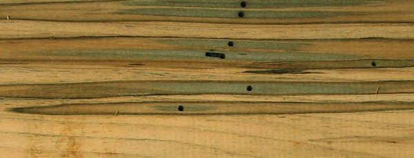 Wormy wood figure