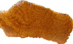brown mallee burl