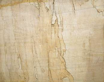 Spalted Soft Maple Wood Cookie