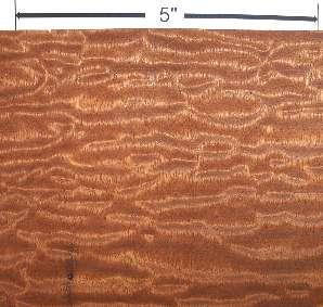 sapele : quilted sapele - Adamdwight.com